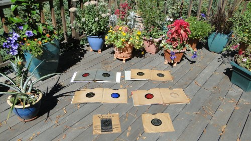 DISCS, GARDEN, LS 001
