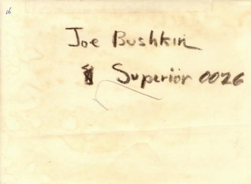 LOUIS - BUSHKIN photo rear