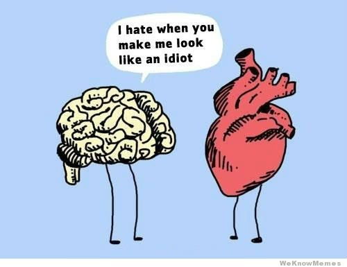 Heart brain i-hate-it-when-you-make-me-look-like-an-idiot