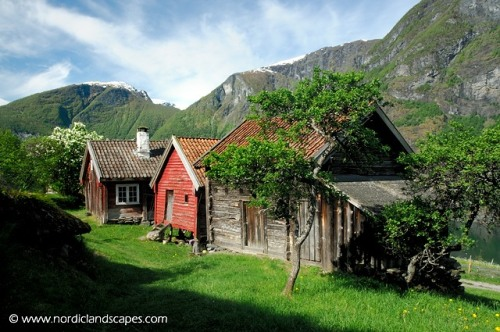 norwegian-farm-photos